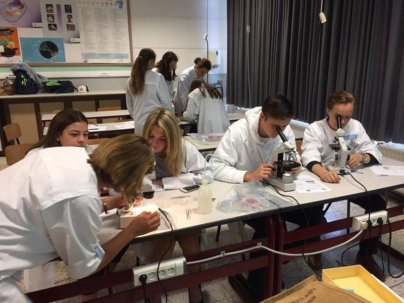 Leerlingen in labo kijken door een microscoop